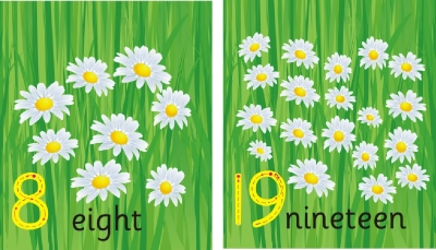 SET OF INDIVIDUAL FLOWER NUMBER RECOGNITION PLAQUES - WORD & DIGIT