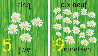 SET OF INDIVIDUAL FLOWER NUMBER RECOGNITION PLAQUES - BILINGUAL & DIGIT