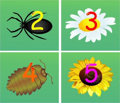 SET OF INDIVIDUAL IN THE GARDEN MINIBEAST/FLOWER NUMBER FORMATION PLAQUES - DIGIT