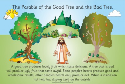 PARABLE - THE GOOD FRUIT & THE BAD FRUIT