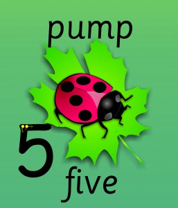 SET OF 11 BILINGUAL WELSH INDIVIDUAL LADYBIRD NUMBER RECOGNITION