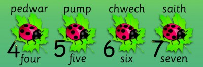LADYBIRD BILINGUAL WELSH NUMBER RECOGNITION