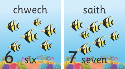 SET OF 11 BILINGUAL WELSH INDIVIDUAL FISH NUMBER RECOGNITION PLAQUES