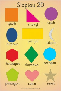 2D WELSH SHAPE POSTER BOARD