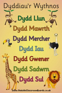 JUNGLE WELSH DAYS OF THE WEEK POSTER BOARD