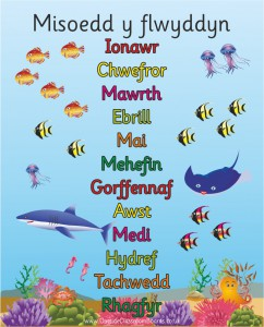 UNDER THE SEA WELSH MONTHS OF THE YEAR POSTER BOARD
