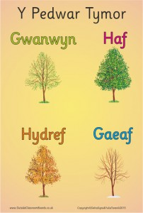 FOUR SEASONS WELSH POSTER BOARD