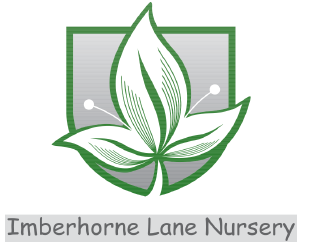 Imberhorne Lane Nursery Plant Centre Ltd