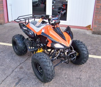 125cc Cheetah Kids Fun Quad. 3 speed with reverse.