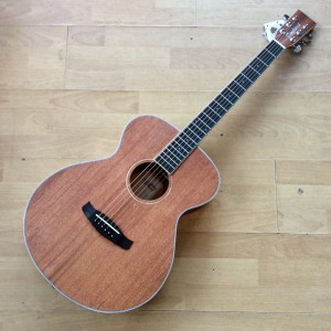 Tanglewood Union Series Folk