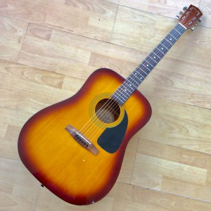 Fender Dreadnought DG-4/TS