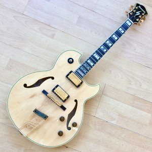 Ibanez Pat Metheny PM120