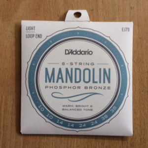 D'Addario mandolin 10's Light