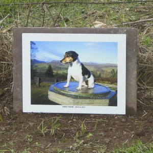 Memory Prints can be for both people or pets.