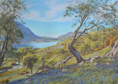 Rannerdale in May